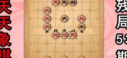 天天象棋专区