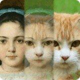 Zooface app