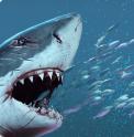 饥饿变种鲨手游
