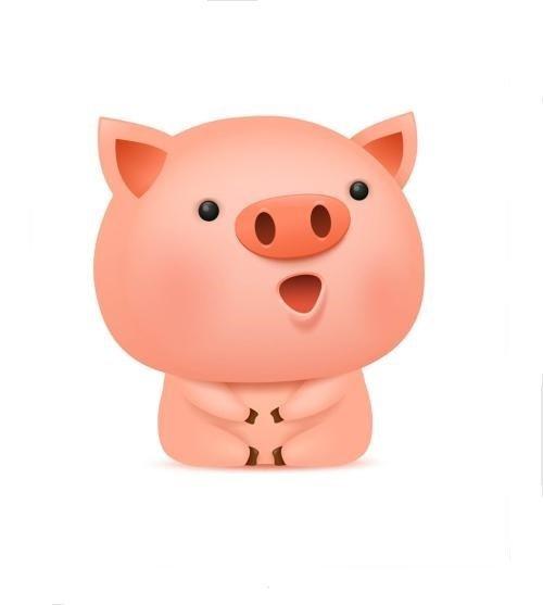 阳光养猪的我
