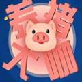养猪大咖赚钱