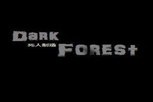 沉沦之地黑暗森林