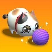 Balls Bump Cat