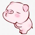 全民养猪app最新版