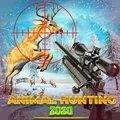 狙擊獵人狩獵
