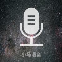 中英语音翻译器
