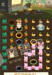小火兔农场养殖