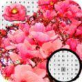 玉兰花像素艺术
