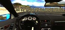 最真实的模拟驾驶游戏
