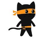 功夫忍者猫