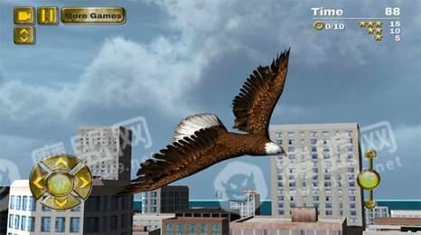 鹰鸟模拟器