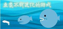 鱼类不断进化的威尼斯人真人棋牌_游戏