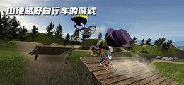 山地越野自行车的游戏