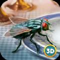3D仿真蒼蠅模擬器手機版